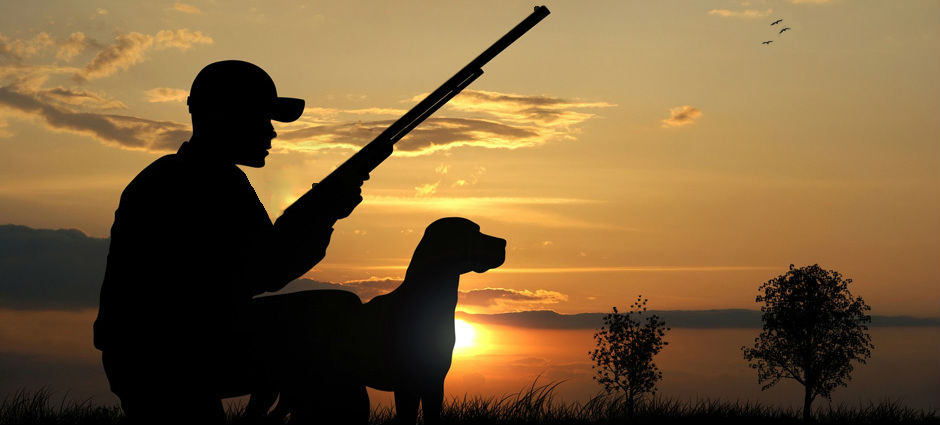 wildwingslinger-hunter-dog-sunset-web-ready1